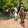 Adagio Riding Stables's profile