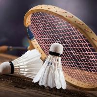 Female Coach Badminton's profile