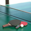 Table Tennis Coach (Part Time)'s profile