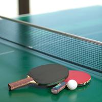 Table Tennis Coach (Part Time)'s profile
