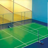 Badminton Head Coach's profile