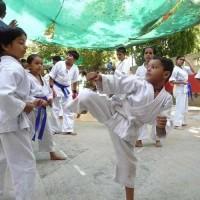 Martial Art Classes In Janakpuri's profile